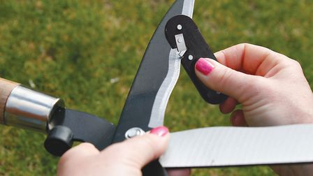 If you sharpen your tools now, when the busy period of spring arrives, you'll have everything you ne