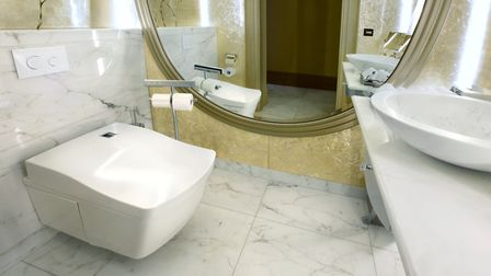 The product includes features such as a heated seat and bidet functions