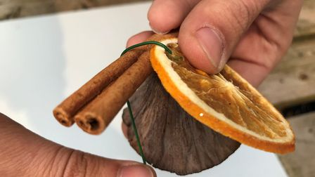 You may want to use dried orange circles - which you can make yourself by cutting the orange into sl