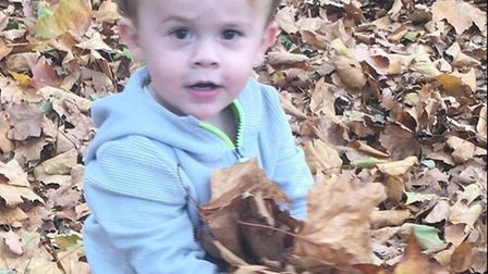 Little Johnny playing in the leaves, which his mum is now worried might contain nasty surprises. Pic