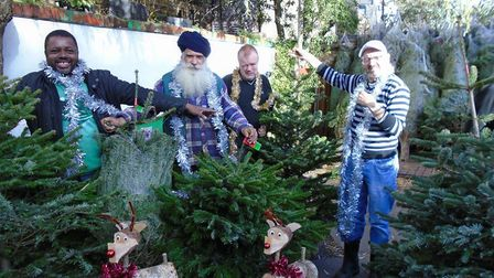 Pictured (L to R): Stephen, Singh, Tony, and Steven show off Mill Lane Garden Centre's bumper crop o