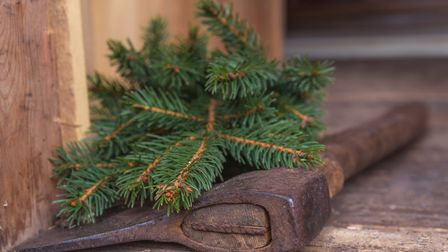 Local authorities may be able to collect your Tree after the festivities.
