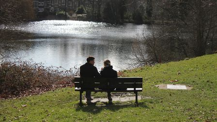 A bench overlooking Hampstead Heath's number 1 pond