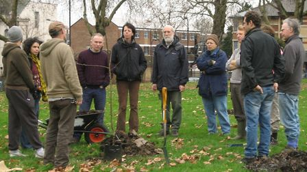 Planting Hackney Downs orchard in 2008. Picture: Tree Musketeers