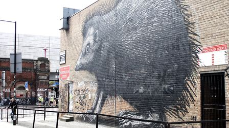 Street artist Roa's hedgehog in Shoreditch. Picture: Flickr/Sarah/CC BY 2.0)
