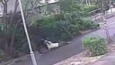 Sanchez Edwards brutally dragged the elderly victim along the pavement, cracking three of her ribs