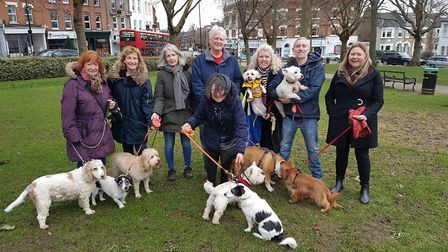 Dog walkers have launched a campaign to encourage Camden Council to set up a dedicated park for them