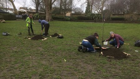 The St John at Hackney community orchard being planted.