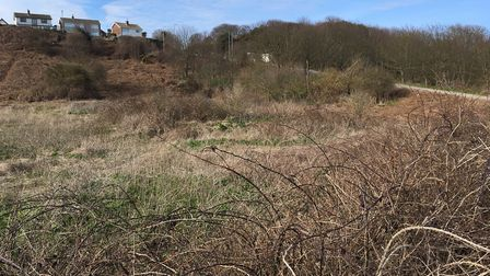 The site of the proposed development on the North Denes in Lowestoft. PICTURE: Conor Matchett