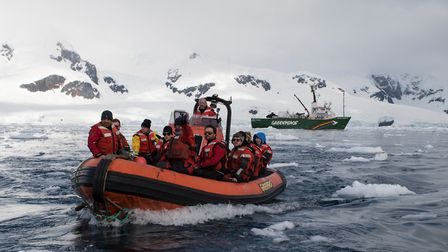 Greenpeace crew in an inflatable visit Neko Harbour in Andvord Bay (home of a Gentoo penguin colony)