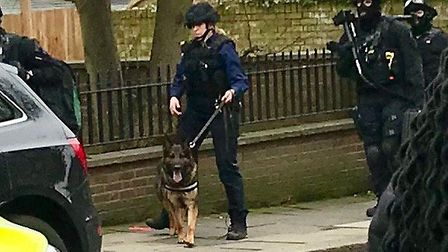 A man was arrested following an armed police operation in Highgate on Sunday. Picture: SUBMITTED