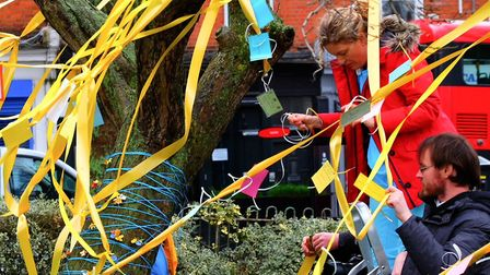 Supporters decorate the tree for Nazanin with ribbons, flowers and jokes. Picture: Linda Grove
