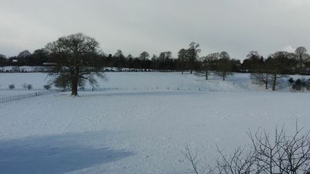 A snowy scene in Somerleyton. Picture: Sarah Chapman