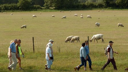 Walking for health in the countryside. Photo: Bill Smith