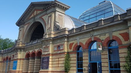 The election count is taking place today at Alexandra Palace