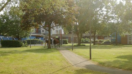 """@NightingaleEstate tweeted: """"Never seen a horse response unit to a #stabbing on an Estate before. On"""