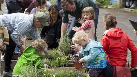 Volunteers of all ages get together in E5 to plant flowers in the streets for the 10x Greener projec