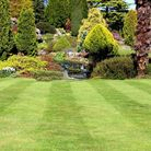 Undated Handout Photo of a striped lawn and shrub border. See PA Feature GARDENING Advice Tools. Pic