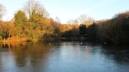 The mixed pond on Hampstead Heath. Picture: CITY OF LONDON CORPORATION