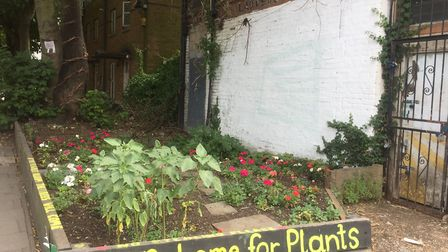 The Lady Eve Garden Project has transformed the flower bed in London Fields. Picture: Alessia Manzon