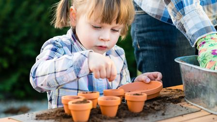 Get your little ones to help with planting
