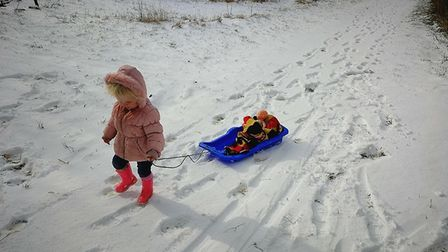 Sophie Campion sent in this photo of sledging in Carlton Colville. Picture: Sophie Campion.