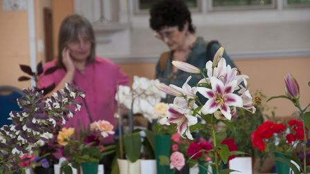 Some delightful summer blooms at the Highgate Horticultural Society's 156th summer show. Picture: Ni