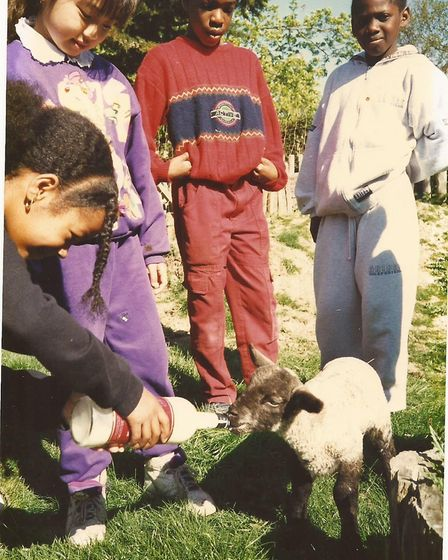 Hackney pupils feeding the Kench Hill lamb in the 1990s.