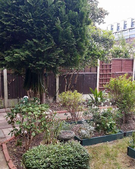 The Cariazo family's backyard was overhauled in Alan Titchmarsh's ITV show Love Your Garden. Picture
