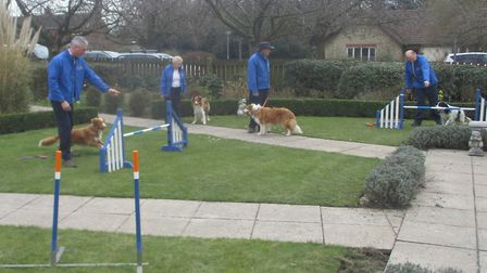 The dog agility display at Oulton Park Care Centre. Picture: Courtesy of Andrea Pullinger.