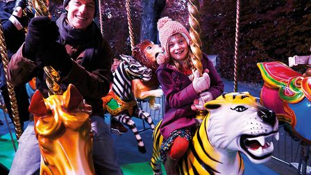 Visitors to Christmas at London Zoo have the chance to enjoy fairground rides after dark