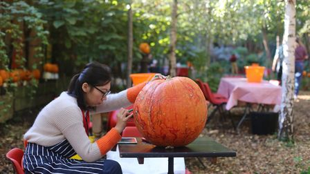 Eco carving out the giant pumpkin at the Dalston Eastern Curve Garden