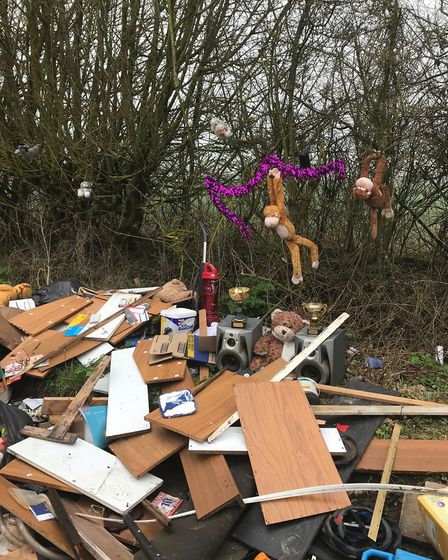 Fly tipped waste in Camps Heath. PICTURE: Denise Gilbert