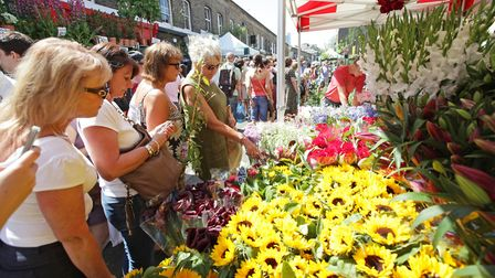 Columbia Road Flower market sells a huge range of plants and cut flowers every Sunday