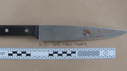 The knife used by Erick Ekam, 19, of Falkland Road, London, in the fatal stabbing of Mohamed Aadam M
