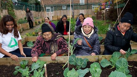 Groundwork London's project Cultivating Communities four years ago worked on integration through cul