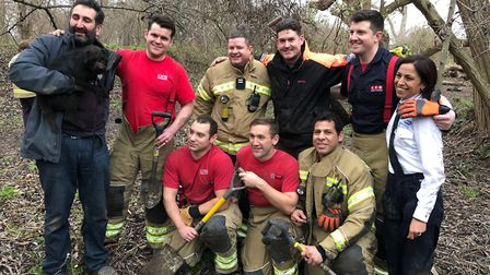 Jamie Gifford from drainage company IBG Services rescued the dog with the London Fire Brigade