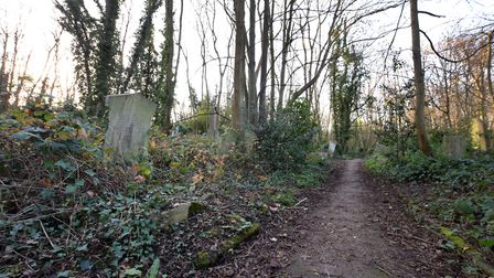 Missionary graves in Abney Park Cemetery. Leota's path with Leota's grave on the left. Picture: Poll