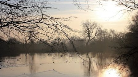 The men's pond at Hampstead Heath. Picture: City of London Corporation