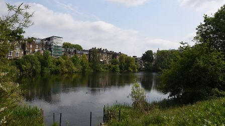Hampstead Pond no.1. Picture: Ken Mears