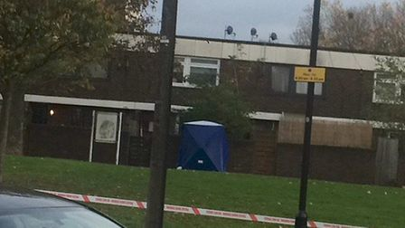 A police tent in Monteagle Way after the fatal stabbing of Kaan Aslan. Picture: Emma Bartholomew