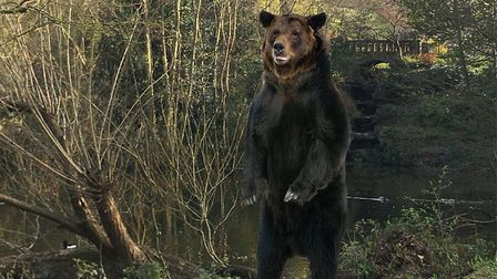 Bear by Amie-Rose Gwyther Legros. Picture: UAL 100 Central St Martins