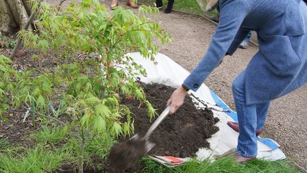 Heath Hands and the City of London's Heath Committee celebrate anniversaries by planting a commemora