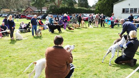 A previous companion dog show in St Olaves