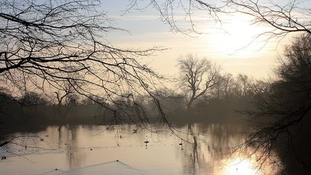 A winter sunrise at the Heath Men's Pond. Picture: City of London Corporation