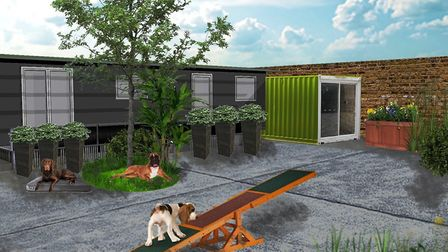 An artist's impression what the yard that Edita would like to revamp could look like. Picture: Josuh