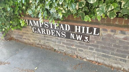 Hampstead Hill Gardens. Picture: Harry Taylor