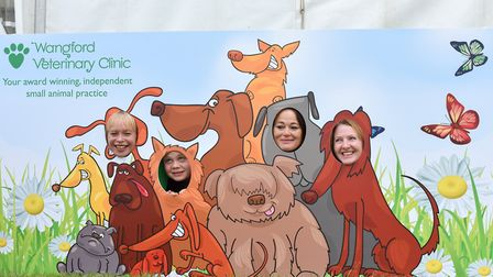 The Strutt Your Mutt charity dog day and walks. Pictures: Kerry Tarrant