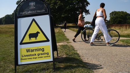 People walk past a 'livestock grazing' sign on Hampstead Heath in London. Picture: Kirsty O'Connor/P