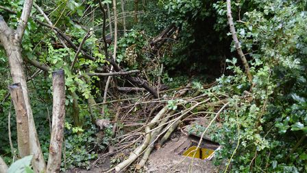 The Hampstead Heath camp where an improvised gun was found. Picture: Met Police